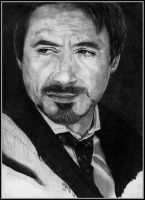 Robert Downey Jnr by Sekhmets-child