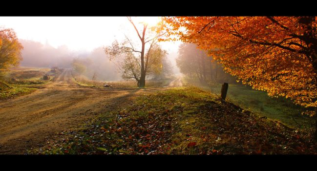 Morning in late October by codrinseth