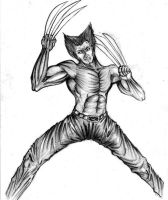 wolverine the bolberines by chroma-utek
