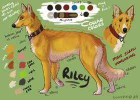 Riley .:ref by Bonz847