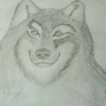 wolf drawing I did long ago by TheOmegaWolfster
