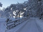 Winterland by Haufschild