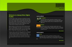 Cyborg Vision site design by PostaL2600