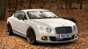 Bentley Continental GT by pacee