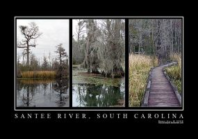 Santee River South Carolina by vacuumslayer