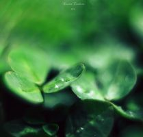 Love-drops by Elanor90