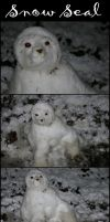 Snow Seal by crystal-kyogre