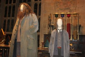 Costume Selection: Hagrid and Filch by Skarkdahn