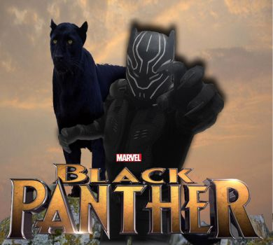 black panther by brazilking
