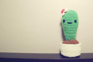 Cactus for the love by vonvonz