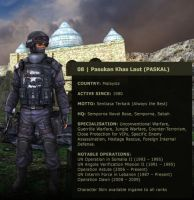 PASKAL in Special Force by Fizzle-Knight
