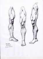 Leg study 12-21-2013 by myconius