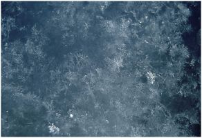 Texture: Snow V by Eirian-stock