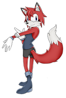 Nameless Red Fox - Gift by Fathix