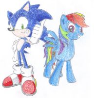 Ask Sonic and Rainbow Dash Cover by MegaArtist923