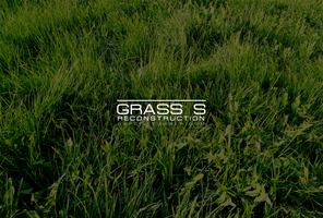 Grass S [RECONSTRUCTION] by xxRapeKxx
