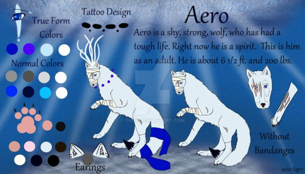 Aero Character Sheet Adult by tige7