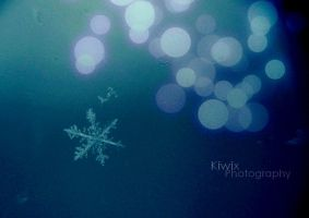 Snowflake by eulalievarenne