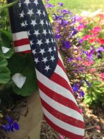 American Flag by Flowers stock by texturesandstuff