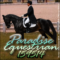 Paradise Stable Avatar by SweetHeartDesigns