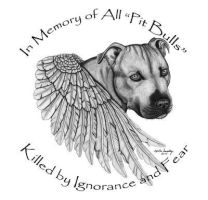 Pit Bull angel by ExaberationofDecay