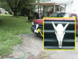 Dragon skull on my truck by qzbk