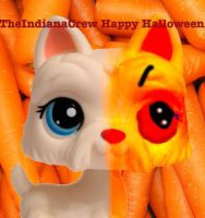 Halloween LPS icon by TheIndianaCrew
