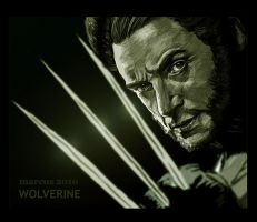 Wolverine by turkill