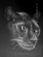 Black Panther by Nemesis38