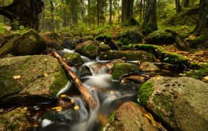 The Way Of Stream by comsic