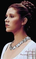 Leia Organa - Princess of Alderaan by Kot1ka