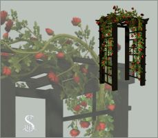 Rose Trellis by sherri-art