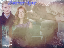 Carlisle and Esme wp by Bellelion