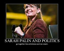 Palin and politics by Birther