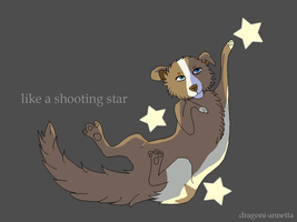 Like A Shhoting Star by dragoni-annetta