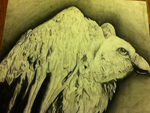 Charcoal Drawing of a Vulture by hayy1