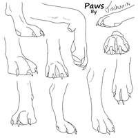 Paws by HardLyUndead