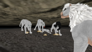dance of white lions 2 by TNT-DOG