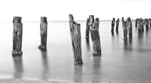 Clifton Springs Old Pier bw by DanielleMiner