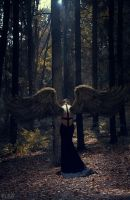 Wings Of Sorrow by FlexDreams