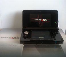 Nintendo 3DS by roxas431