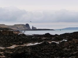 Cold, silent, amazing, Irish shore by Caillean-Photography