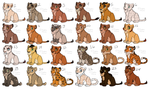 Big Cat Cubs Points Adoption [CLOSED] by P4ndora-L