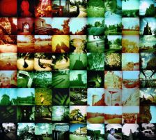 holga collage by KashmirPhotography