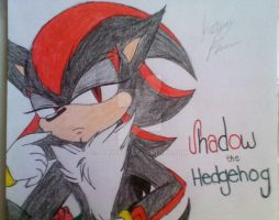 Shadow the Hedgehog by ShimmerTheVampfox