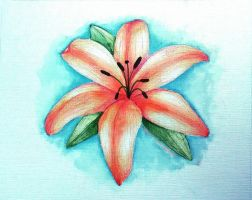 Water Color by MMahaffey1