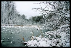 The Pond of Ice by Julian-Bunker