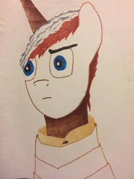 WIP UPDATE for Leatherneck Brony.  by Niallofthe9ine