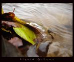 Liquid Autumn I. by Zsolii
