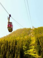 Whistler's Ascent by DillBagel